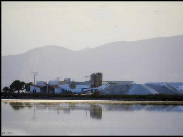 Projecte d'activitats per la llicència ambiental per l'ampliació de la indústria INFOSA.